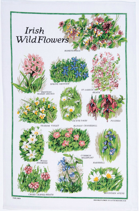 Irish Wild Flowers Ireland